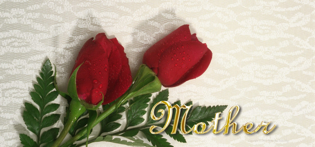 P-204MGD 2 Red Roses (Mother-Gold)